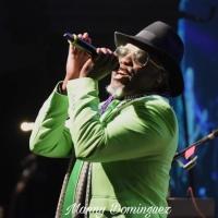 A Bowie Celebration at The Rose, Pasadena, CA, USA North America 2020 Diamond Dogs & Ziggy Stardust 3/6/2020
